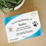 Memorial Certificate with Lock of Hair and Paw Print