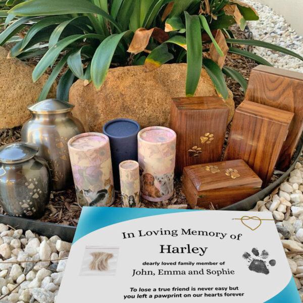 Premium Individual Water Cremation